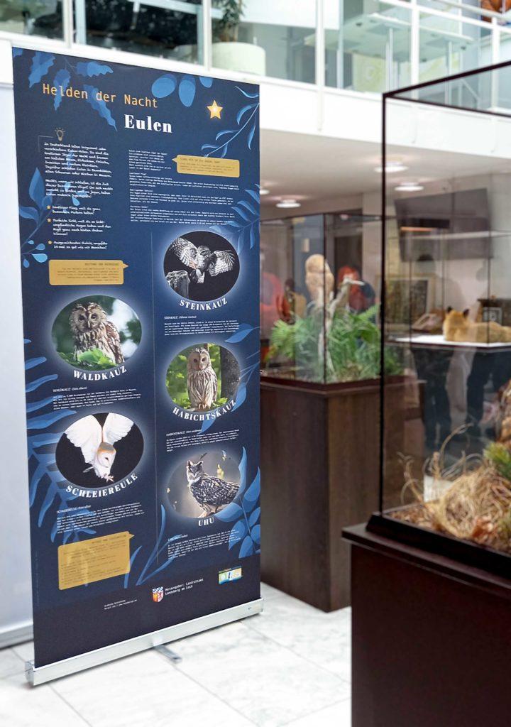 Rollup Eulen, Jahr der Biodiversität